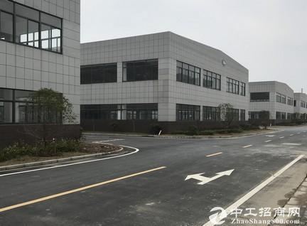 星辉科技产业园 厂房 2600-5800平米可租可售芜湖三山经济开发区-图2