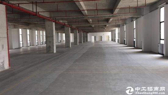 坪山大工业区新出楼上4层单层2380平 可包租