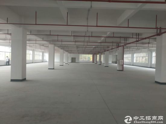 东莞一手高新产业园区红本厂房出售 可分割
