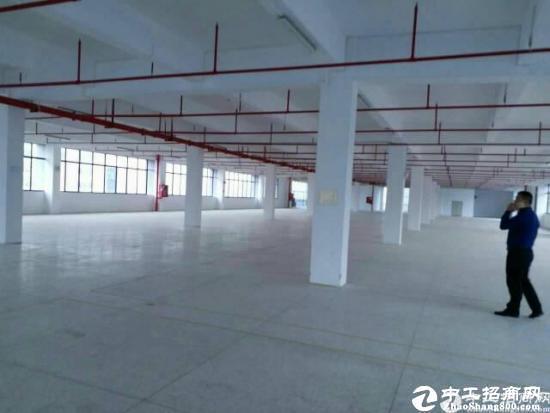 深圳龙岗平湖辅城坳工业区新出楼上1400㎡出租