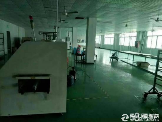 深汕路旁塑胶厂自建厂房出租一二楼每层一千平米