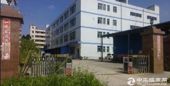 跨境电商工业园原房东厂房6000平方(可分租)