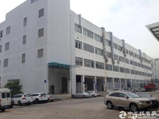 横岗四联社区原房东厂房一楼350平米招租 带精装
