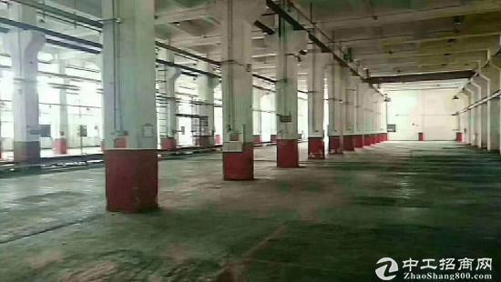 东莞塘厦昨天刚出标准独院钢构厂房800平
