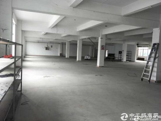 厚街标准独门独院厂房原房东招租,单层面积1280平米