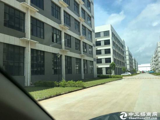 厂房出售,2600一平,1700平米一层-图3