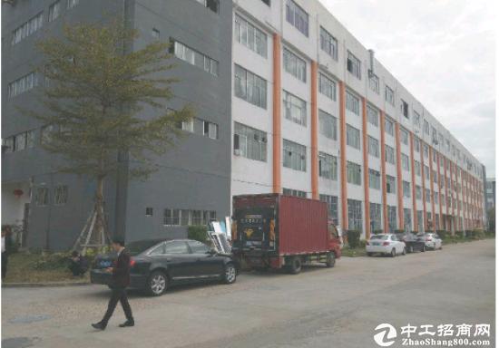 坪山比亚迪路旁一楼600平方带装修厂房出租