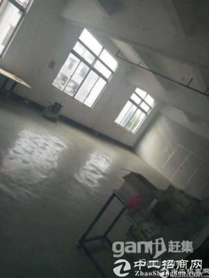 坪山  原房东招商、1楼500平独门独院