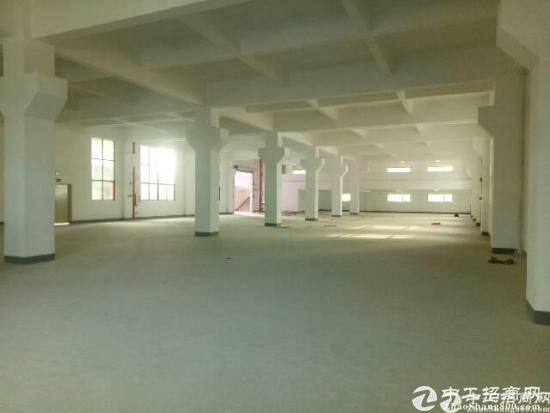 龙岗坪地2900平独院带装修厂房出租有地坪地吊顶