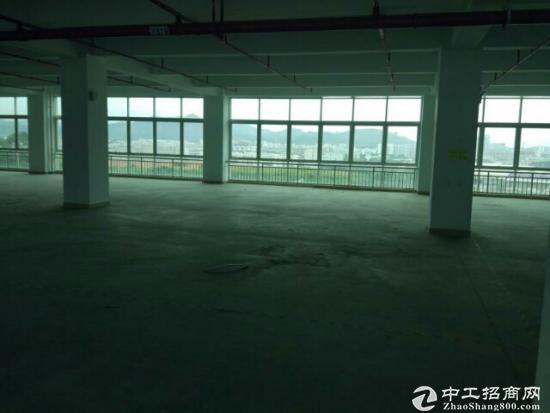 松岗车站附近新出独院厂房30000平方有红本原房东带喷淋低价招租