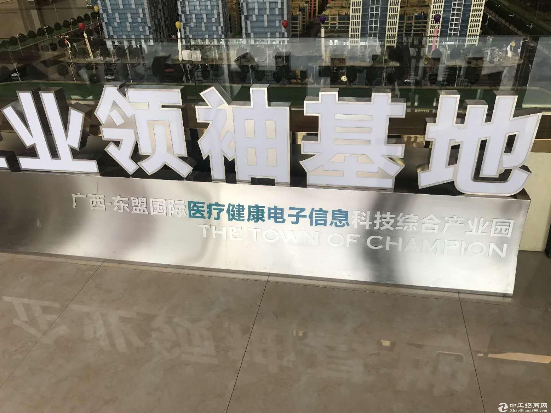 出售江南区东盟领袖基地厂房-图3