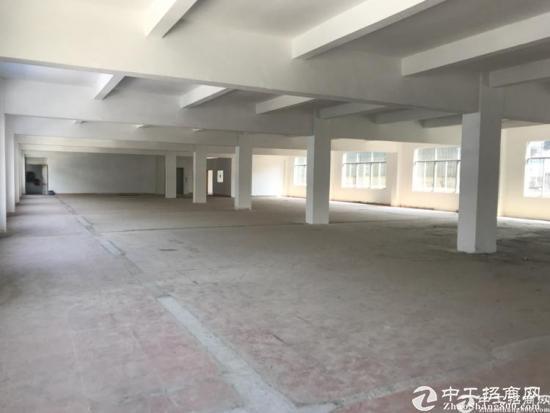龙岗 宝山工业区新出精装1800平厂房