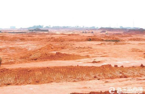 惠州镇隆镇出售国有土地20亩,三通一平