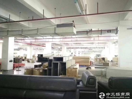 坪山 深汕路边原房东独院厂房4200平