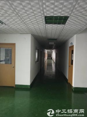 龙岗宝龙新出楼5000平米带精装修厂房出租