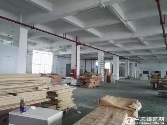 碧岭原房东厂房1400平米,高六米大小可以分租