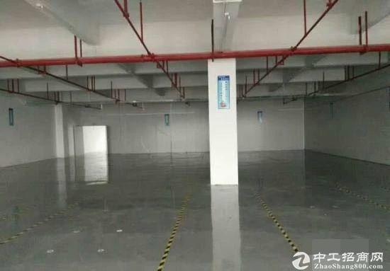 龙岗坪山深汕路 独院3500平 有红本厂房出租