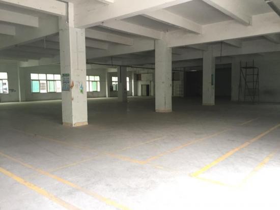 厚街1200平无公摊厂房招租,位于主干道边,交通便利