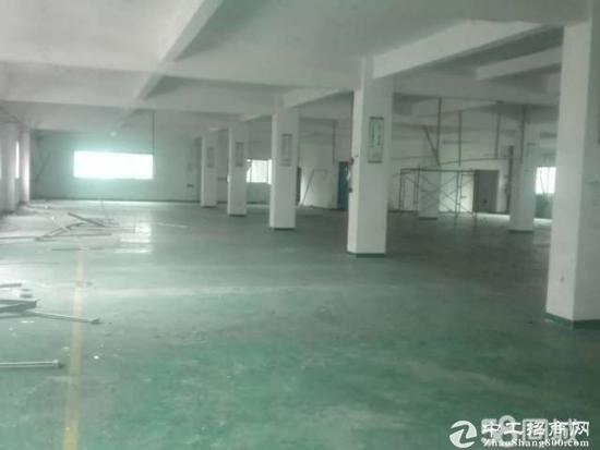 锦厦标准厂房空地大1600平米带办公室招租