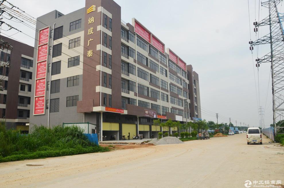 出租江门纳成广泰工业城全新独栋园区厂房