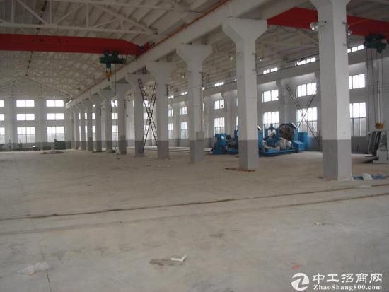 大朗10米高小独院钢结构铁皮房5000平方米出租