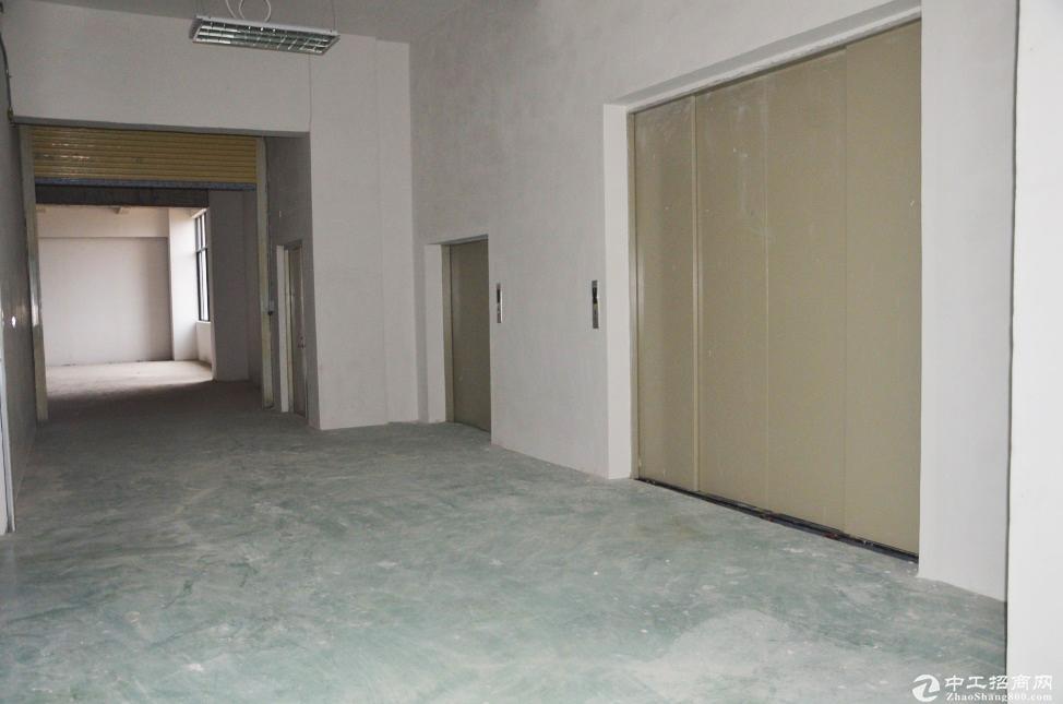 江门市开平镇园区一楼厂房4000平 带配套楼 可分租