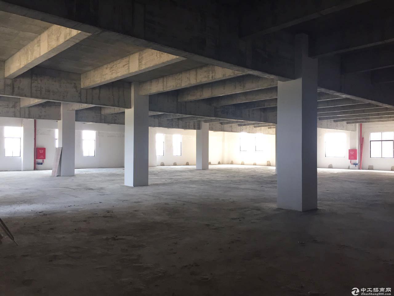 江门市开平新出独栋厂房出租 可分割 双证齐全-图2