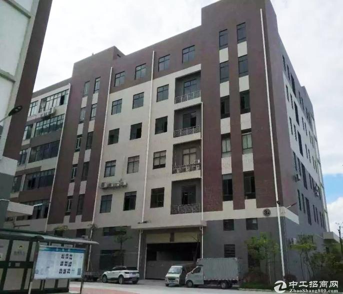 江门市开平新出独栋厂房出租 可分割 双证齐全-图4