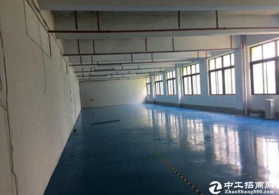 龙岗花园厂房11000平米原房东直租可分租