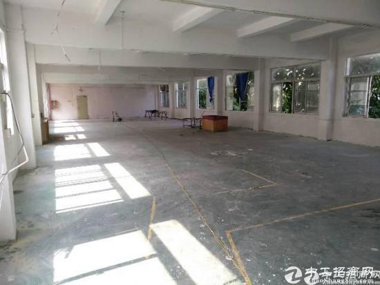 沙塘村经典小独院整栋厂房招租,单层面积650平,有宿舍