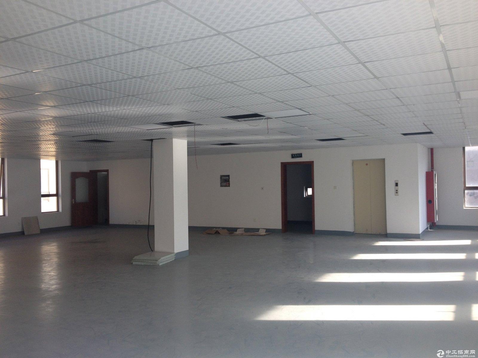 松江大学城 独栋办公研发总部 沿河视野足 可按揭