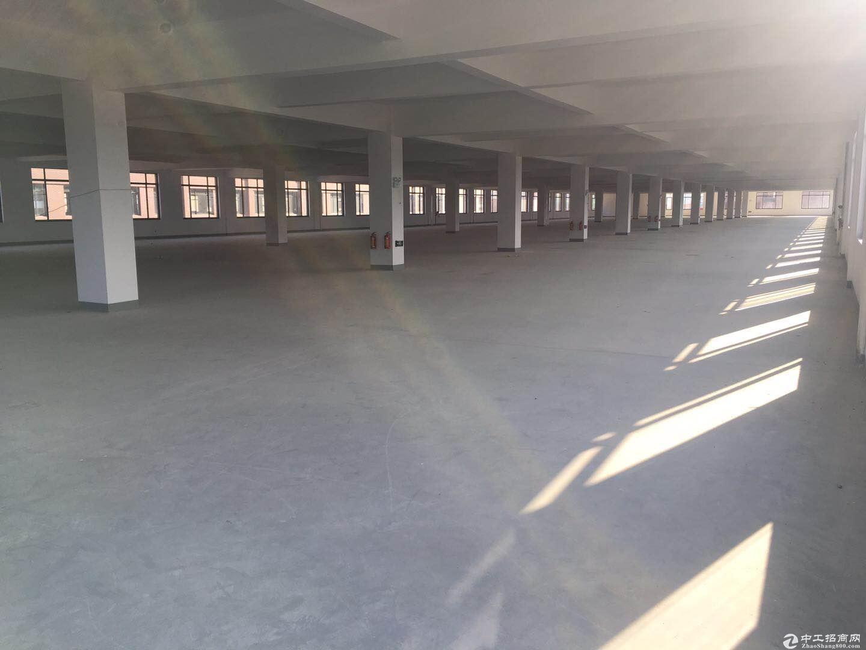 余杭开发区独幢1至3层11000方标准厂房出租