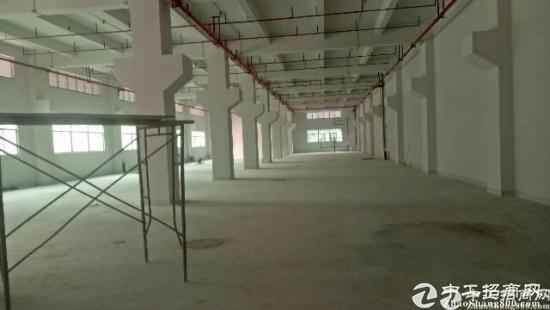 厚街镇彩云路科技园内全新翻修厂房1-2楼招租,一楼有牛角