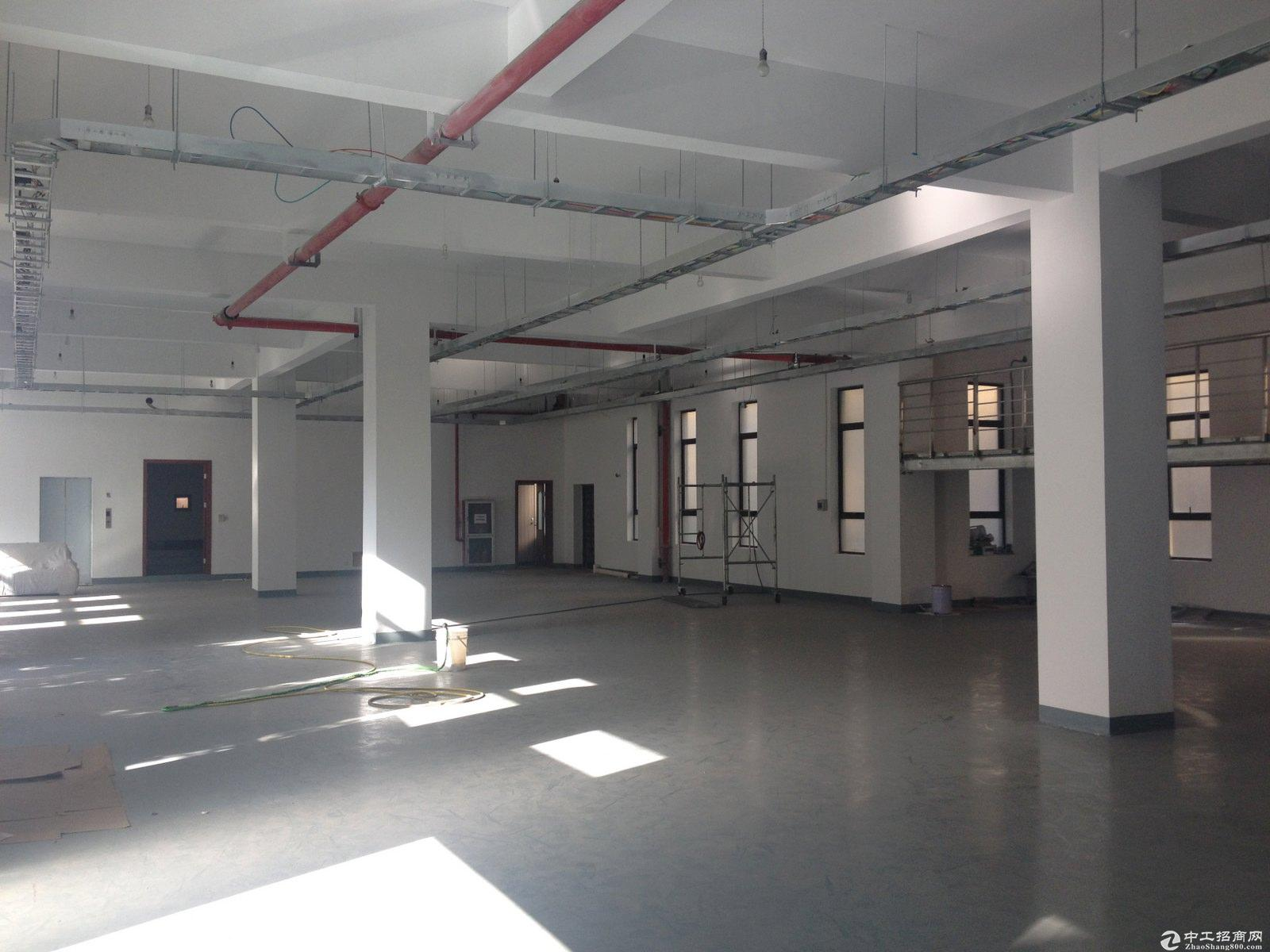 松江整层面独立产证办公研发总部 可环评 可按揭诚售