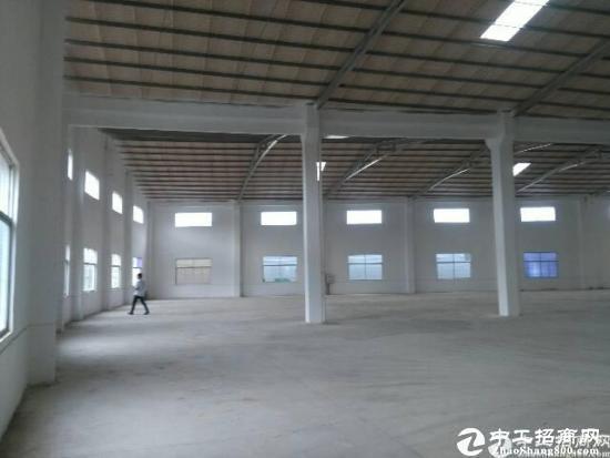 厚街镇工业园新出钢构厂房1800平滴水8.5米