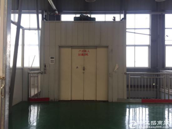 经开区主干道旁独门独院2000-6000平优质仓库