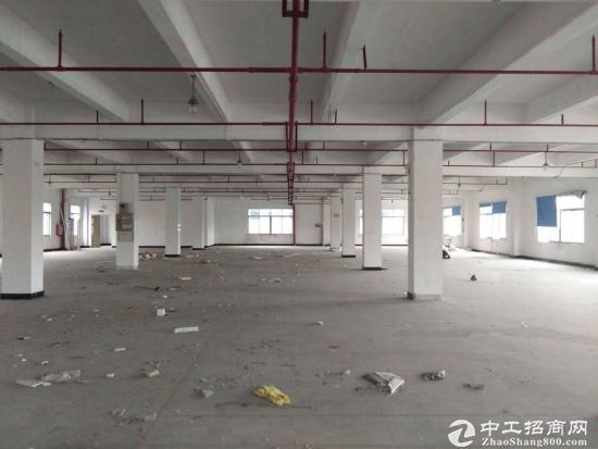 沙田镇新出三层面积3540平米厂房,自带行车,消防喷淋