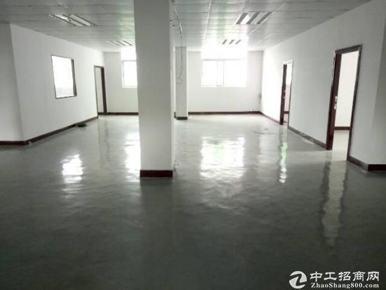 南五莞太路旁独栋厂房出租五楼整层600平方精装,有电梯