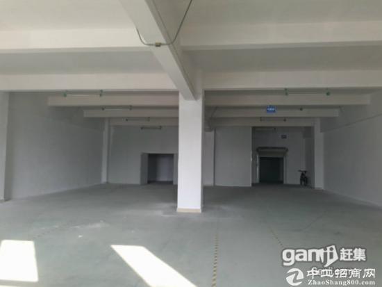 坪山  工业区490平米带地漆和办公室厂房出租
