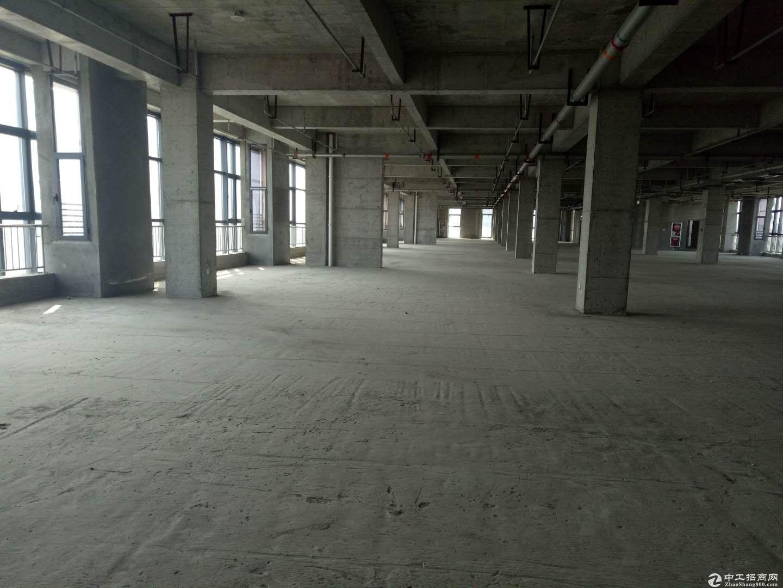 经济开发区独栋产业楼售