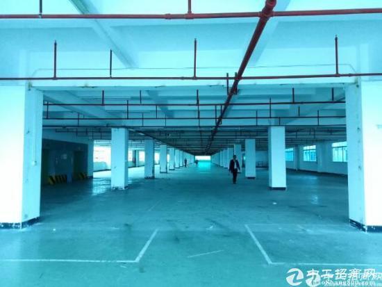 西丽超大单层5700平米厂房可做电商