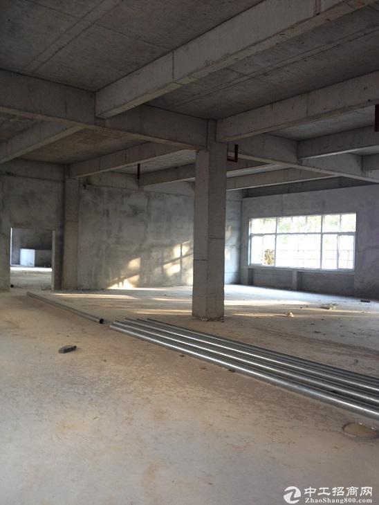 企业独栋厂房800-1200平,首付三成即可,中南高科大品牌专业园区-图2