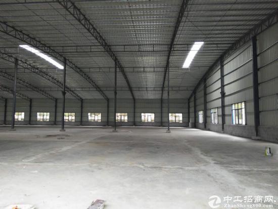 新圩原房东7米高钢构厂房1200平米出租