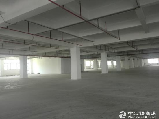 西乡固戍带红本原房东独门独院1-5层19000平面厂房出租-图5