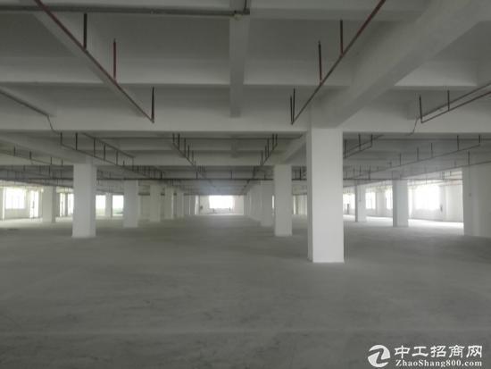 西乡固戍带红本原房东独门独院1-5层19000平面厂房出租-图3