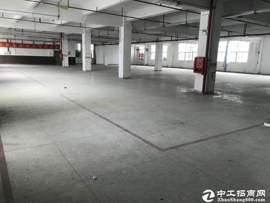 坪地 新出红本独院11000平方 可分租-图5