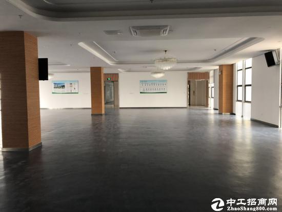 坪山大工业区新建红本研发大楼,2000平起分租