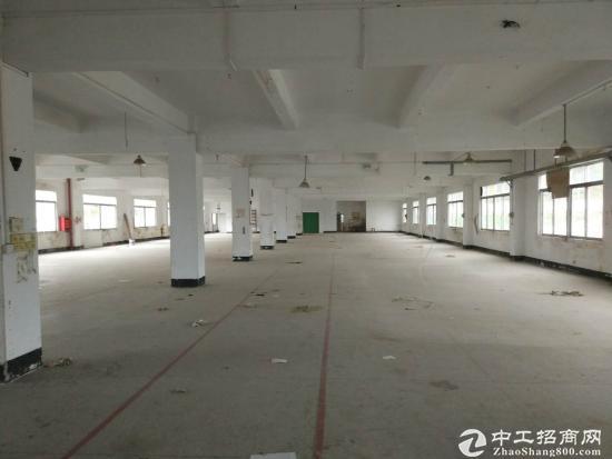深圳坪山新区坑梓9800独院厂房出租