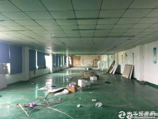 龙岗爱南路边独院厂房二楼带装修860平出租