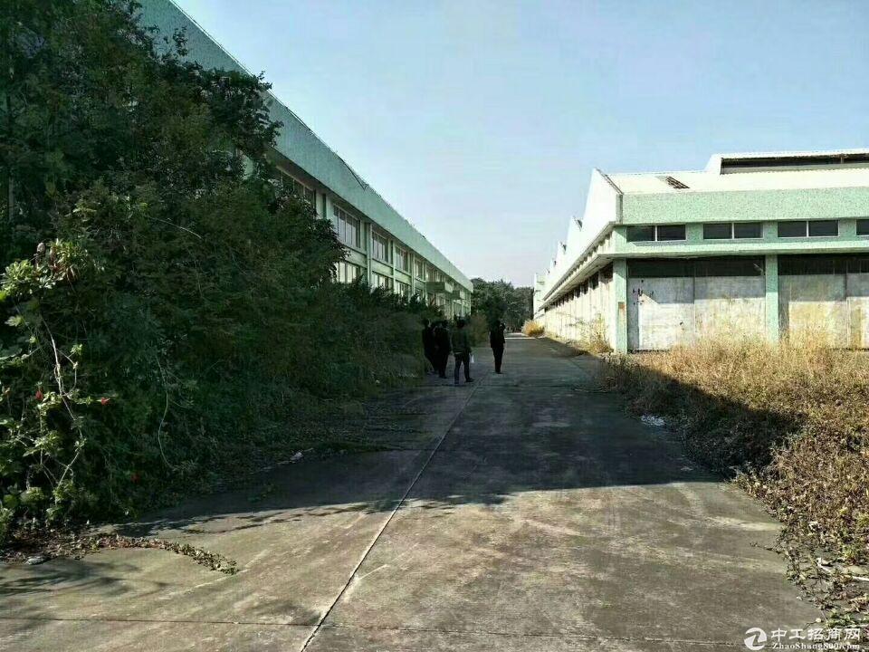 中山市港口镇20000方仓库出租